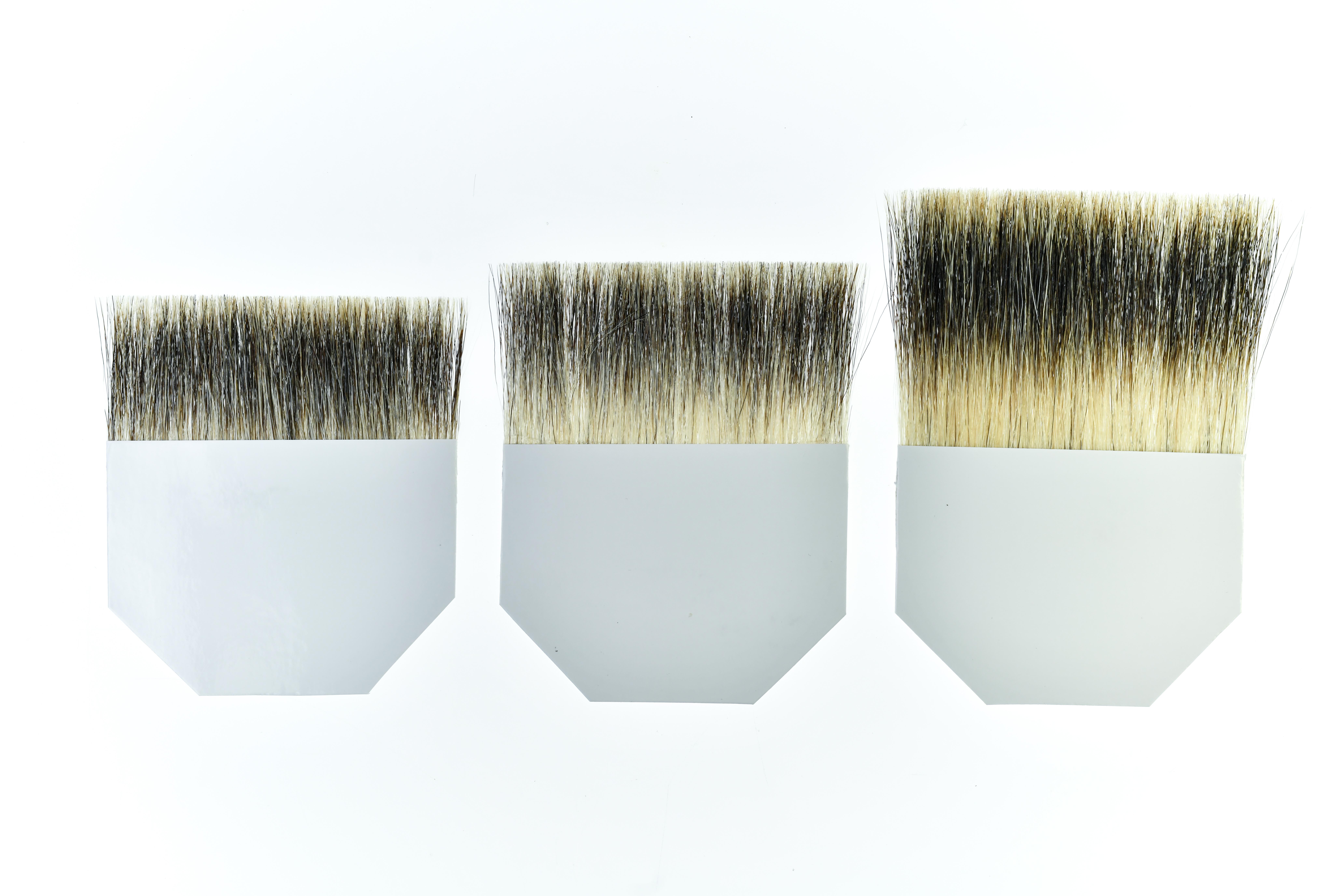 Badger Hair Tips